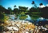Tablon el Rio Der Fluss bei El Tablon